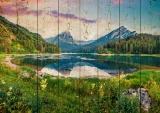 Картины на досках Природа