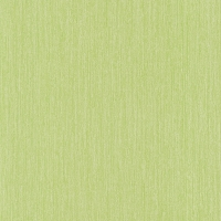 05566-30 Обои P+S International X-treme colors