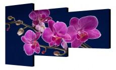 Набор из 3 панно (150х100 см) Цветок BT Y-2014H