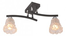 Накладной светильник 217/2PF-Blackchrome