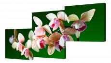 Набор из 3 панно (150х70 см) Цветы BT Y-2013H