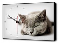 Настенные часы (60х37 см) Серая кошка Bl-2402
