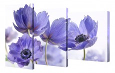 Набор из 3 панно (78х50 см) Цветы BT XH-208