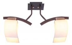 Светильник на штанге 33921/2FGD+BKD WT