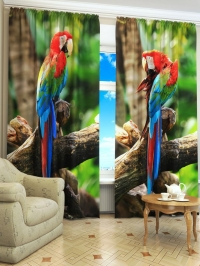 Фотошторы «38 попугаев»
