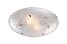 Накладной светильник Floret 249
