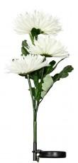 Цветок Астра PL304 06236