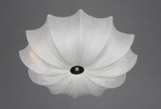Накладной светильник OM-419 OML-41907-06