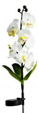 Цветок Орхидея PL301 06259
