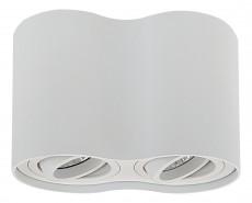 Накладной светильник Binoco 052026