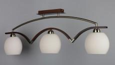 Светильник на штанге OM-269 OML-26937-03