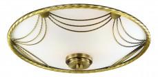 Накладной светильник Salva 3219