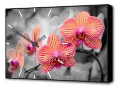 Настенные часы (60х37 см) Орхидеи BL-2202