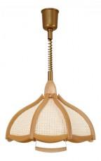 Подвесной светильник Eco 1621 дуб