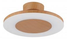 Накладной светильник Discobolo 4495