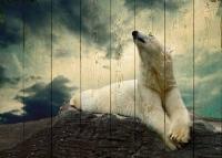 Картины на досках Животные МФ10103