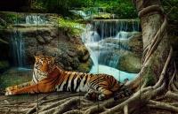 Картины на досках Животные МФ10104