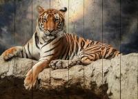 Картины на досках Животные МФ10105