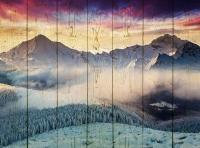 Картины на досках Природа МФ10107