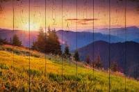 Картины на досках Природа МФ10108