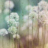 Картины на досках Цветы МФ10149