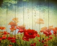 Картины на досках Цветы МФ10152