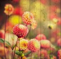 Картины на досках Цветы МФ10153