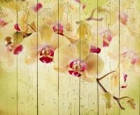 Картины на досках Цветы МФ10161