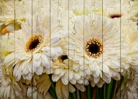 Картины на досках Цветы МФ10168