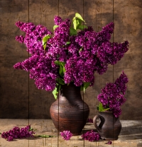 Картины на досках Цветы МФ10169