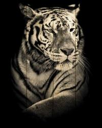 Картины на досках Животные МФ10237
