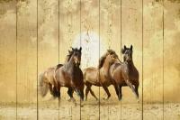 Картины на досках Животные МФ10241