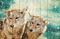 Картины на досках Животные МФ10263