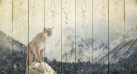 Картины на досках Животные МФ10274