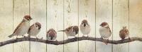 Картины на досках Животные МФ10279