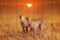 Картины на досках Животные МФ10291