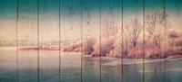 Картины на досках Природа МФ10307