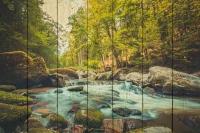 Картины на досках Природа МФ10315