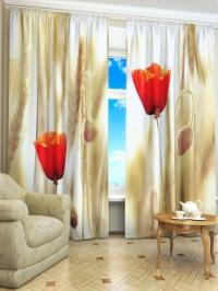 Фотошторы «Полевые тюльпаны»
