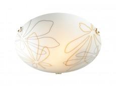Накладной светильник Mortia 242