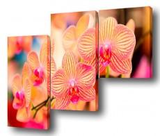 Набор из 3 панно (150х100 см) Цветы BT Y-2000H