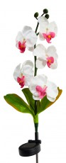 Цветок Орхидея PL301 06258