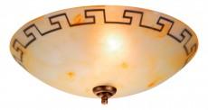 Накладной светильник Veronica 40460