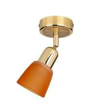 Спот 5046/1PA Gold/Orange