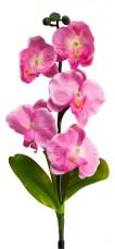 Цветок Орхидея PL301 06257