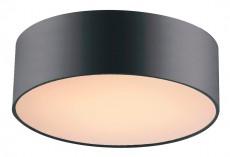 Накладной светильник Cerchi 1514-2C